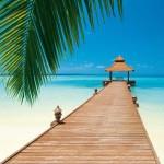 00284-Paradise-Beach-0