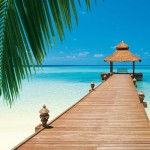 00376-Paradise-Beach-0