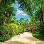 00438-Tropical-Pathway-0
