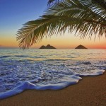 00955-Pacific-Sunrise-0
